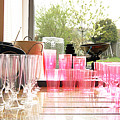 Party Drinks by Terri Waters