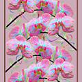 Party Orchids by Rosalie Scanlon