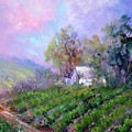 Paso Vineyard by Sally Seago