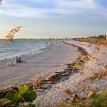 Pass A Grill Beach Florida by David Lee Thompson