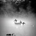 Pass Time by Roberta  Gennaci-Attalla