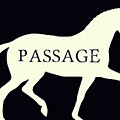 Passage Negative by Dressage Design