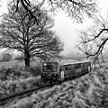 Passenger Train Travel by Anthony Dezenzio
