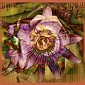 Passion by Chuck Brittenham