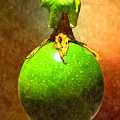 Great Passion Fruit by Max Steinwald