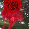 Passion In The Rain by Margareth Osju