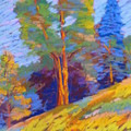 Pastel Class Demo by Rae  Smith PSC