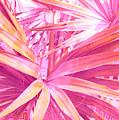 Pastel Dream In Pink by Susanne Van Hulst