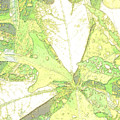 Pastel Green Nature by Rosalie Scanlon