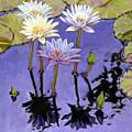 Pastel Petals by John Lautermilch