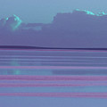 Pastel Sunset Sea Lilac by Tony Brown