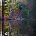 Pastels In Reflection  by Skip Willits