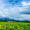 Pastoral Vermont Farmland by James Aiken