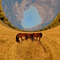 Pasture Of Another World by Richard L Gordon