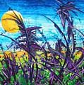 Patch Of Field Grass by Rollin Kocsis