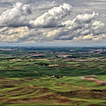 Patchwork Palouse by Wes and Dotty Weber