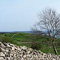 Patchwork Quilt Lough Corrib Maam Ireland by Teresa Mucha