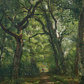 Path In The Forest by Henri Joseph Constant Dutilleux