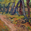 Path In The Garden Of The Asylum, By Vincent Van Gogh, 1889, Kro by Peter Barritt
