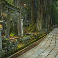 Path Through Koyasan Okunoin Cemetery, Japan by Sara Winter