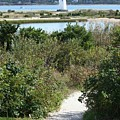 Path To Edgartown Lighthouse by Carol Groenen