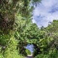 Path To Huntington Beach by Scott Kwiecinski