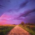 path to Phantasiland by Mikel Martinez de Osaba