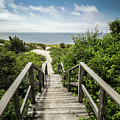 Path To The Beach by Robert Anastasi