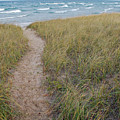 Path to the Beach by Twenty Two North Photography