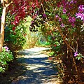 Path To The Gardens by Donna Bentley