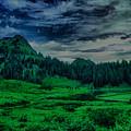 Path To Tipsoo Lake by Jeff Swan
