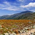 Path To Washington by Rockybranch Dreams
