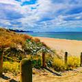 Path To Whiritoa Beach, Coromandel by Clive Littin
