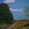 Pathway by Dottie Briggs