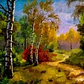 Pathway Through The Forest H A by Gert J Rheeders