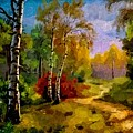 Pathway Through The Forest H B by Gert J Rheeders