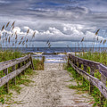 Pathway To Paradise by Charles Lawhon