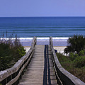 Pathway To The Beach by Deborah Benoit