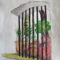 Patio Window - Gifted by Judith Espinoza