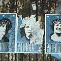Patriot by Sara Stevenson