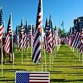 Patriotic by Richard Jenkins