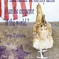 Patriotic Hen by Anita Faye