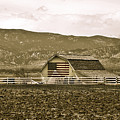 Patriotism And Barn by Marilyn Hunt