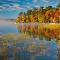 Patten Pond by Susan Cole Kelly