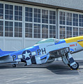 Paul 1 P-51d Mustang by Tommy Anderson