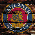 Paulaner Beer Sign 1a by Brian Reaves