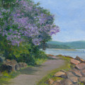 Paulownia Along The Nyack Trail by Phyllis Tarlow