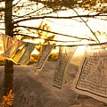 Prayer Flags by Kevin Vautrinot