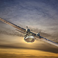 Pby Catalina Soars by Rob Lester