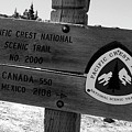 Pct Scenic Trail by David Lee Thompson